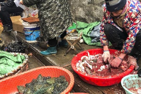 80 người chết vì virus Vũ Hán, Trung Quốc khóa chặt Hồ Bắc, kéo dài nghỉ Tết-2