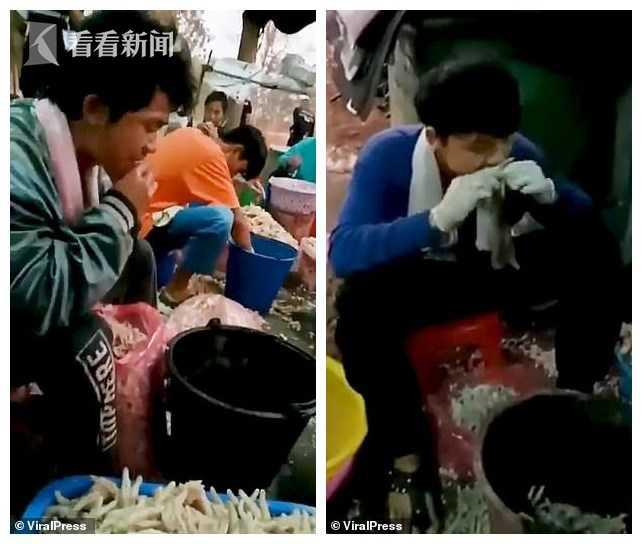 Dùng răng rút xương chân gà sống, bà chủ Thái Lan hài lòng với tình hình kinh doanh: 400 - 500kg chân gà đã được bán ra khắp Châu Á mỗi ngày-1
