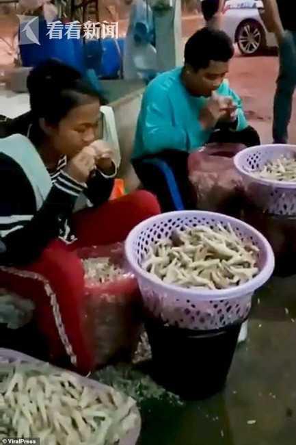 Dùng răng rút xương chân gà sống, bà chủ Thái Lan hài lòng với tình hình kinh doanh: 400 - 500kg chân gà đã được bán ra khắp Châu Á mỗi ngày-2