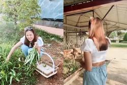 Nam Thư bị chỉ trích khi mặc crop-top vào nhà thờ Tổ của Hoài Linh