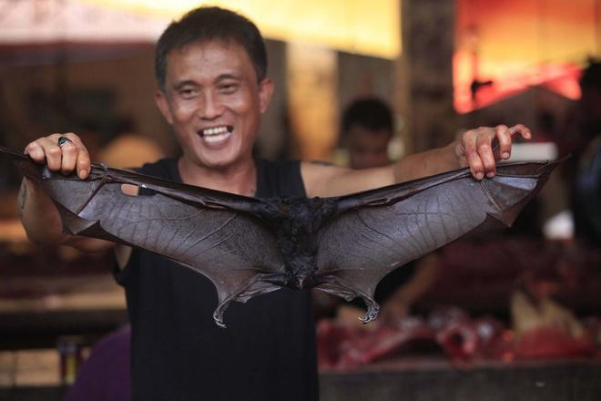 Loạt nhà hàng Indonesia ngừng bán món dơi hầm vì virus corona-1