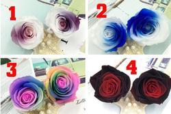Trắc nghiệm: Chọn 1 bông hoa hồng bạn thích để biết tình yêu của bạn và người ấy ở mức nào?