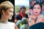 Sao Việt đồng loạt 'giải cứu' dưa hấu ủng hộ nông dân giữa mùa dịch Corona