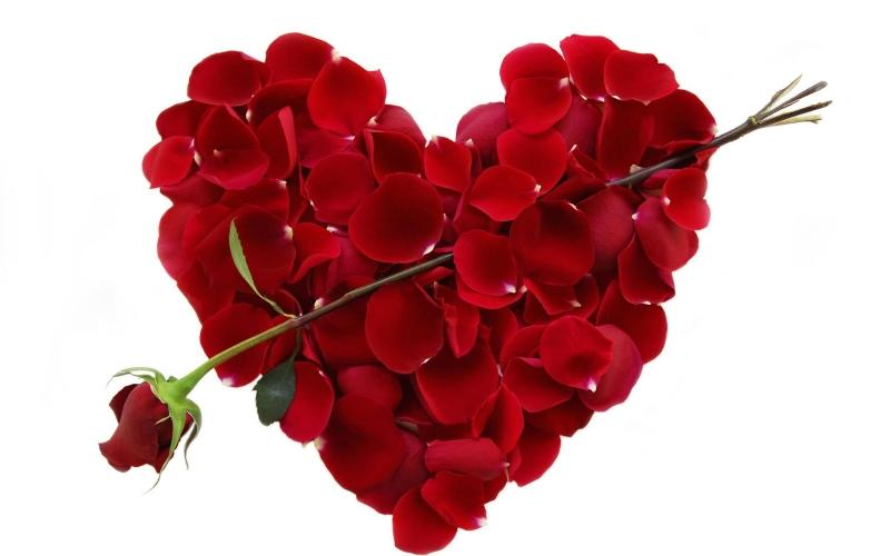Những lời chúc Valentine ngọt ngào dành tặng người yêu thương không thể bỏ qua-3