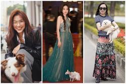 Sao Việt dắt thú cưng đi dạo: Hà Tăng như 'soái tỷ', Nam Em lại lộng lẫy tựa nữ hoàng
