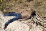 Phát hiện thi thể nam giới bị bịt mắt ở bãi đất trống