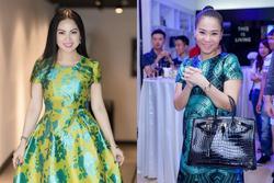 2 nữ ca sĩ Việt lấy chồng tỷ phú: Em gái Cẩm Ly giàu tới mức choáng ngợp
