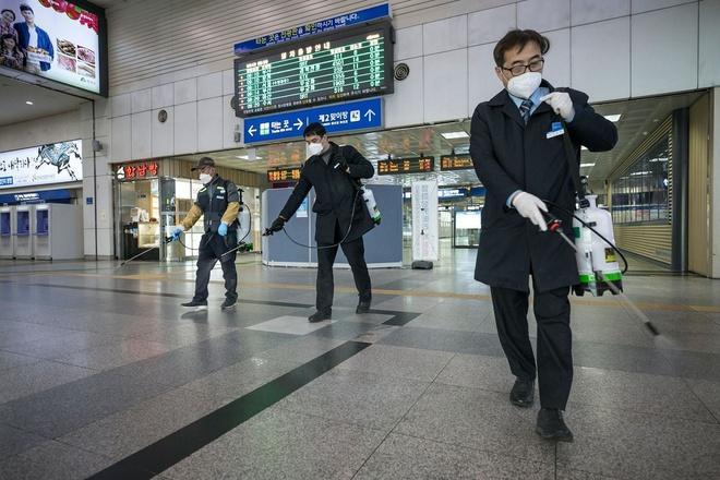 WHO: Thế giới phải chuẩn bị cho nguy cơ đại dịch-2