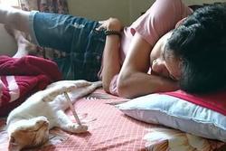 Từ 'quàng thượng' hạ mình xuống vai hầu, chú mèo ngoan ngoãn dùng 2 tay giữ chặt điện thoại cho cậu chủ nằm xem phim