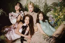 BlackPink trở thành nhóm nhạc nữ Kpop có doanh thu tour diễn cao nhất mọi thời đại