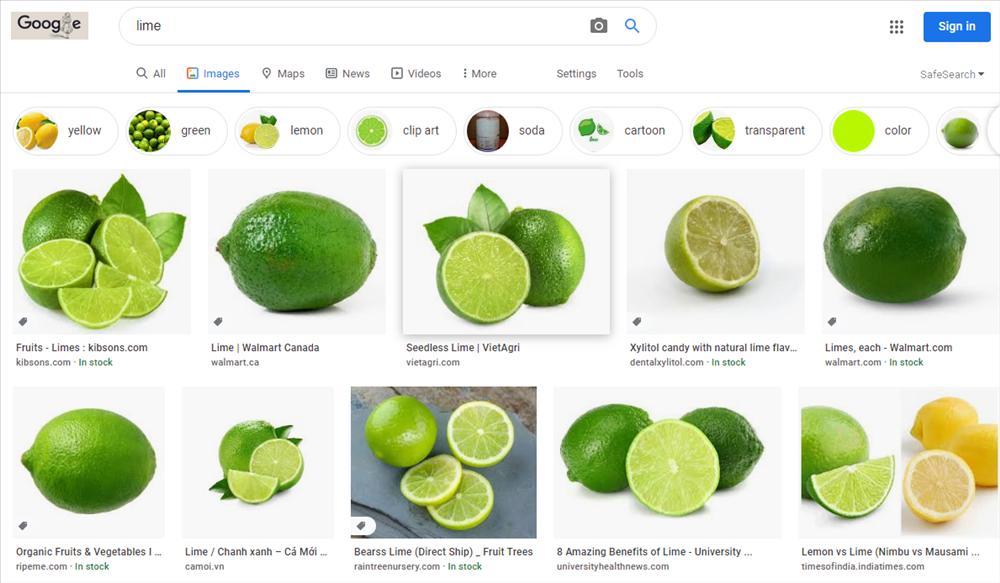 Những nghệ danh của sao Việt đến Google cũng đành câm nín trong việc tìm kiếm-8