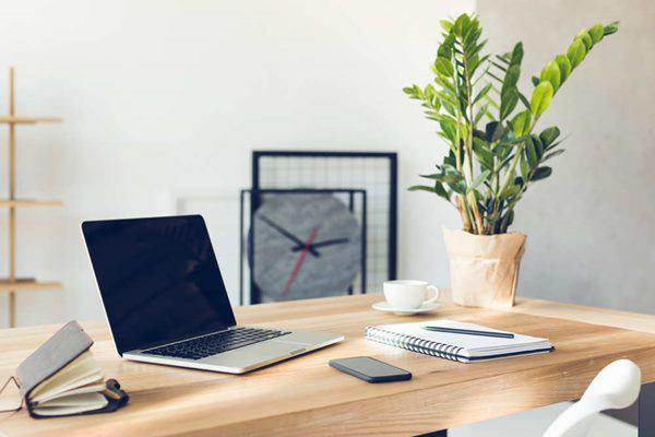 Không chỉ để trang trí, đặt cây cảnh trên bàn làm việc còn có những lợi ích tuyệt vời này-1
