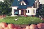 4 giấc mơ cảnh báo căn nhà bạn đang ở không được may mắn, phải nghĩ đến chuyện chuyển ngay lập tức