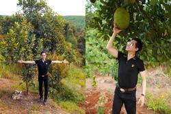 Ngọc Sơn khoe mảnh đất rộng 20.000 m2 ở Lâm Đồng