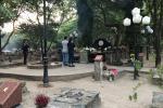UBND tỉnh Bà Rịa - Vũng Tàu nói gì trước đề nghị của huyện Côn Đảo ngưng nhận khách