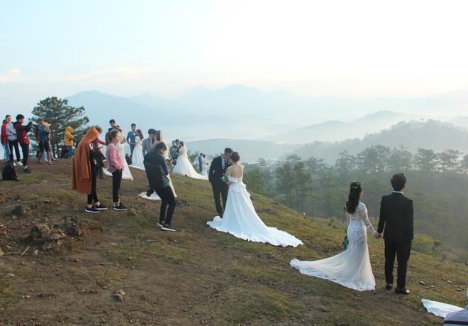 Hàng chục cặp cô dâu, chú rể kéo đến ngọn đồi hot nhất tại Đà Lạt, chen nhau từng mét vuông đất chỉ để chụp ảnh-5