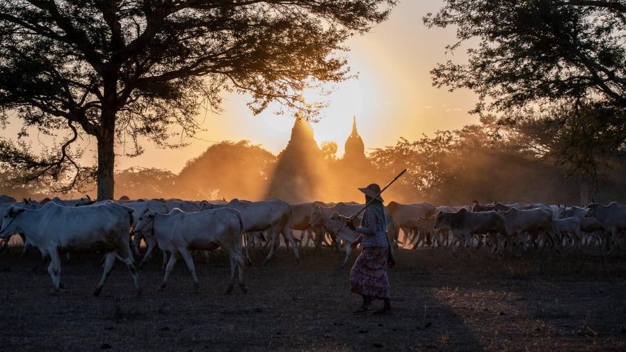 Những bức ảnh du lịch đẹp nhất hành tinh đầu năm 2020-6