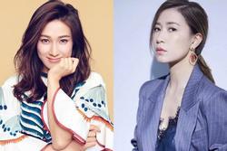 'Bằng chứng thép 4' bị chê vẫn có rating cao, TVB mời Xa Thi Mạn đóng tiếp phần 5