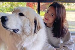 Song Hye Kyo khoe mặt mộc đẹp ngỡ ngàng, khỏe mạnh sau thời gian tự cách ly