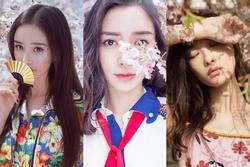Mỹ nhân Hoa ngữ chụp hình với hoa anh đào: Dương Mịch, Angela Baby hay ai thanh tao nhất?