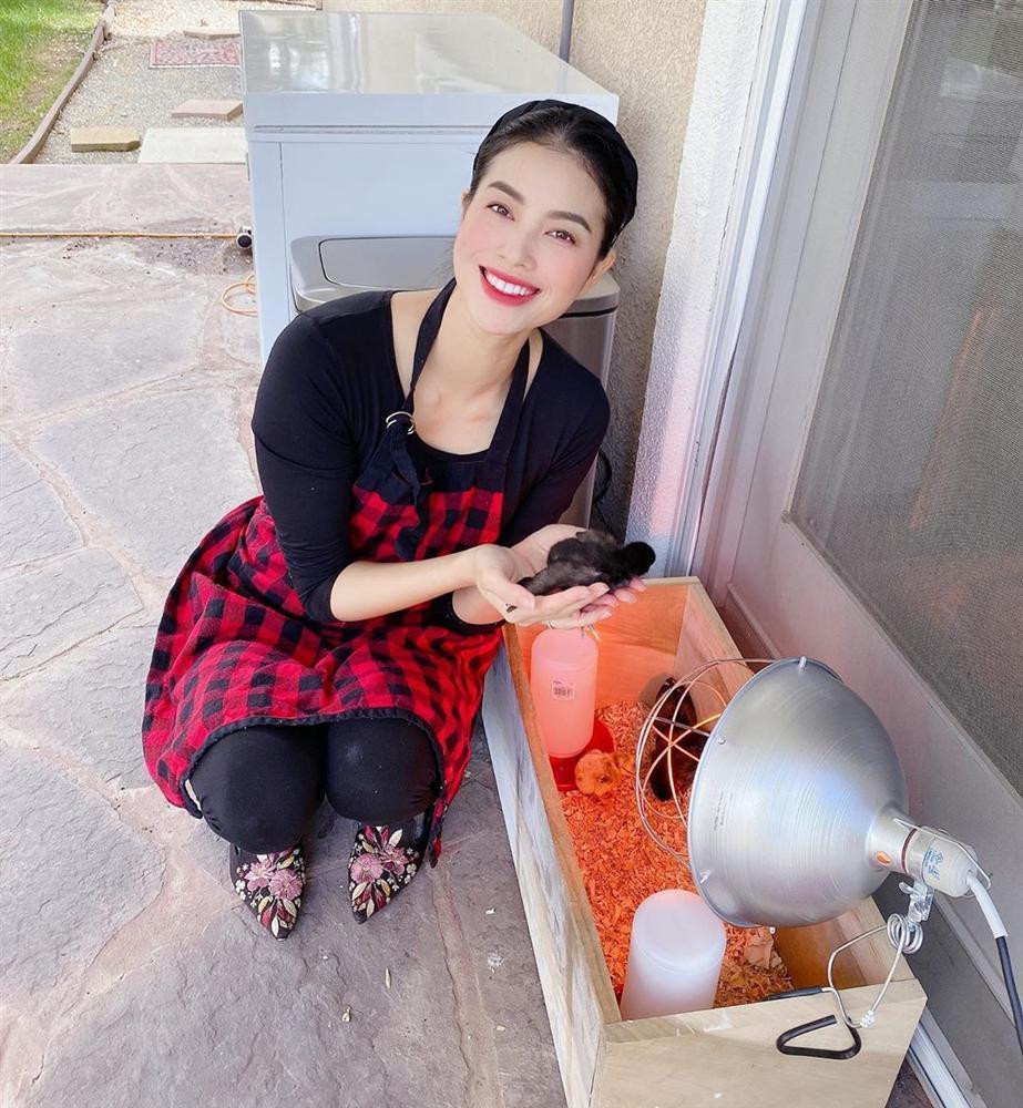 Hoa hậu Phạm Hương trồng rau, nuôi gà trên đất Mỹ-1