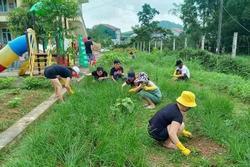 Tinh thần đẹp của quân và dân trong khu cách ly tại Hà Tĩnh