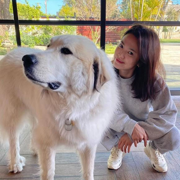 Lại thêm một lần hở của Song Hye Kyo, hờ hững vòng 1 thôi cũng quá hot-4