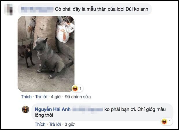 Sự thật về hình ảnh mẹ chú chó idol Nguyễn Văn Dúi, dân tình còn ngỡ ngàng vì giống nhau từ lông đến biểu cảm-4