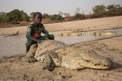 Ngôi làng nơi người dân sống chung với 200 con cá sấu