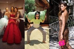 Bản tin Hoa hậu Hoàn vũ 4/4: Chẳng phấn son 'lồng lộn', gái quê H'Hen Niê vẫn chiếm trọn spotlight