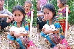 Bé gái vùng cao nằng nặc giữ chú chó nhỏ không bán, hoàn cảnh phía sau khiến triệu người xúc động