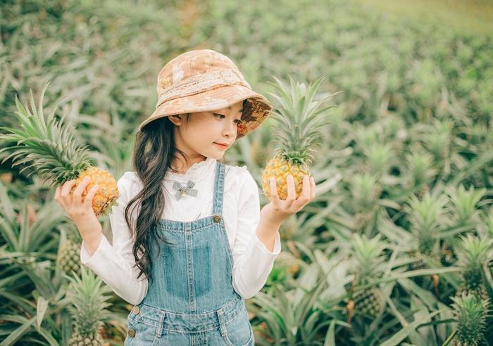 Bắc Giang cũng có một cánh đồng dứa đẹp mơ màng chẳng kém gì Ninh Bình-2