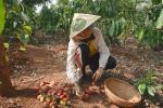 Khán giả quốc tế nói về cuộc sống của H'Hen Niê tại quê hương Đắk Lắk