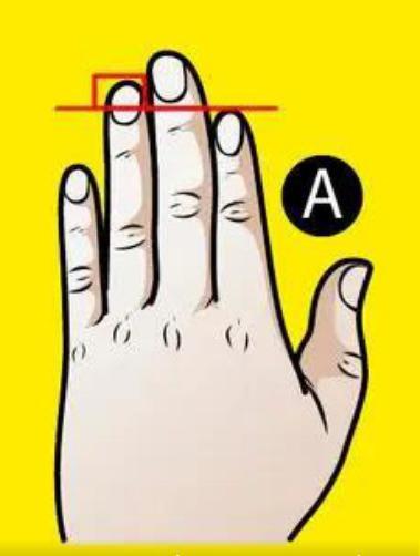 Trắc nghiệm: Xòe bàn tay trái ra xem bạn thuộc kiểu nào, sẽ có những tiết lộ bất ngờ về bản thân bạn-2