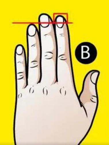 Trắc nghiệm: Xòe bàn tay trái ra xem bạn thuộc kiểu nào, sẽ có những tiết lộ bất ngờ về bản thân bạn-3