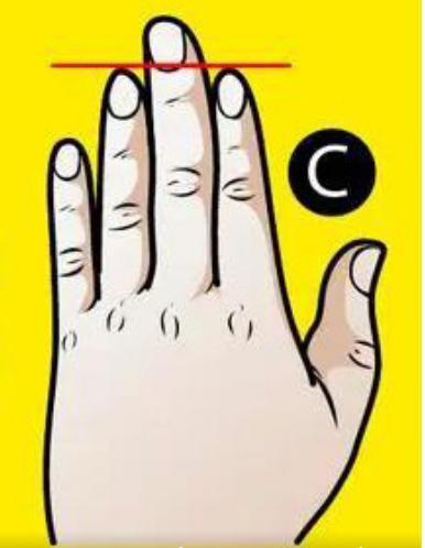 Trắc nghiệm: Xòe bàn tay trái ra xem bạn thuộc kiểu nào, sẽ có những tiết lộ bất ngờ về bản thân bạn-4