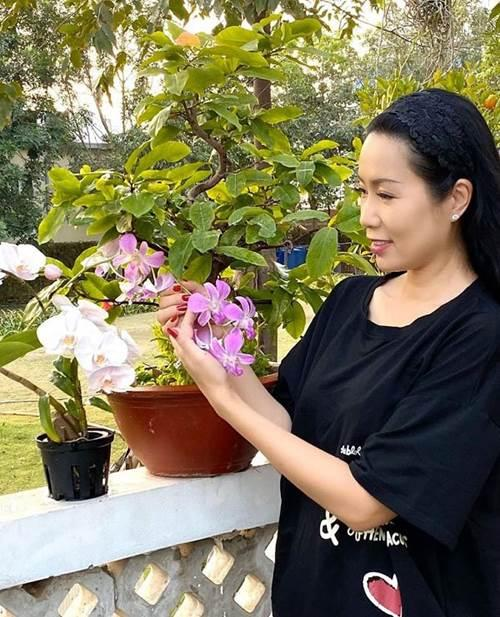 Không chỉ hợp diện ra ngoài, áo phông được nhiều sao Việt mặc ở nhà để giấu dáng kém thon-4