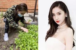 Sở hữu khối tài sản hàng trăm triệu USD, Angela Baby vẫn tự tay trồng rau sạch tại gia