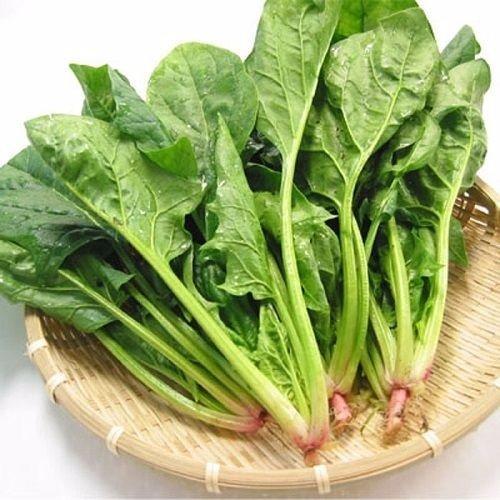 Chọn loại rau thích ăn nhất để biết khi yêu bạn là người chân thành hay ích kỷ-3