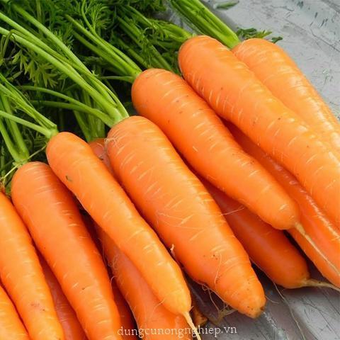 Chọn loại rau thích ăn nhất để biết khi yêu bạn là người chân thành hay ích kỷ-10