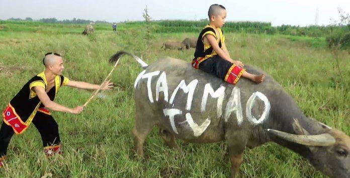 Hé lộ cuộc sống thuở cơ hàn của anh em Tam Mao trước khi sở hữu nhà tiền tỷ ở Ba Vì-8