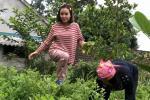 Bà Tưng mặc đồ kín bưng, hái rau, nuôi gà ở quê khác hẳn hình ảnh nổi loạn cách đây gần 7 năm