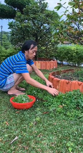 Danh hài Hoài Linh đen xạm chuẩn nông dân sau thời gian ở ẩn làm vườn-3