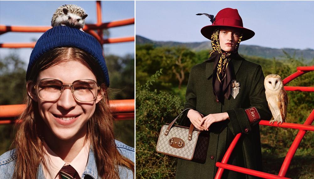 Người mẫu Gucci đội nhím trên đầu, ôm chồn hôi quảng cáo quần áo-1