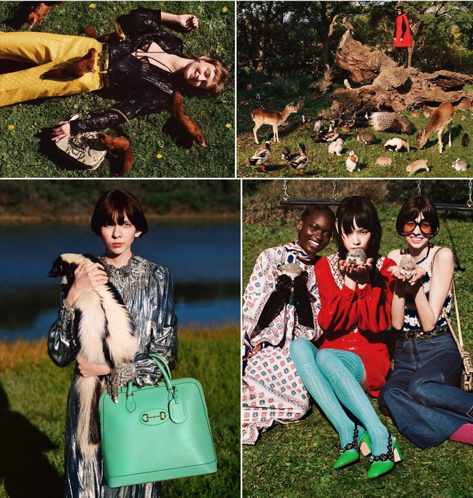Người mẫu Gucci đội nhím trên đầu, ôm chồn hôi quảng cáo quần áo-2