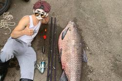 Anh chàng câu được con cá 50kg ở Nhật Bản, dân mạng liền gợi ý gửi về một nơi ở Việt Nam để có món ăn ngon