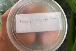 Mẹ gửi hộp trứng từ quê lên, tờ giấy nhắn bên trong chỉ có một câu nhưng ai đọc cũng xúc động