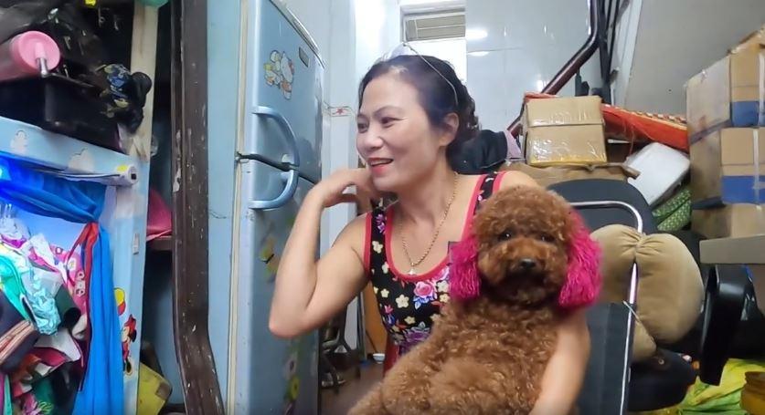 MXH Việt phát cuồng cô chó đi bằng 2 chân, video mới xuất hiện hút gần 5,5 triệu lượt xem-2
