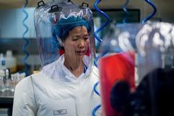 Chuyên gia Viện Virus học Vũ Hán công bố nguồn gốc của virus corona