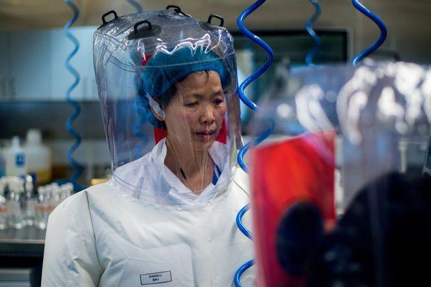 Chuyên gia Viện Virus học Vũ Hán công bố nguồn gốc của virus corona-1